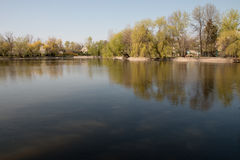 Natura della primavera nel parco - il lago Fotografia Stock