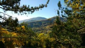Natura della Serbia in autunno - bello fogliame di autunno degli alberi nella priorità alta, la corona degli abeti e montagne Fotografie Stock