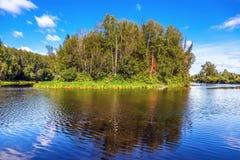 Natura della Siberia Immagine Stock