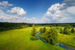 Natura della sorgente Paesaggio della sorgente Prato verde con il fiume ed il cielo blu immagine stock libera da diritti