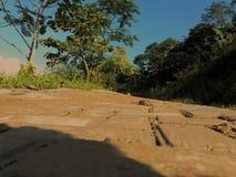 Natura della via Fotografie Stock