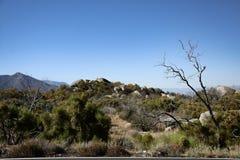 Natura delle montagne Immagine Stock