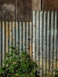 Natura dello zinco del recinto Immagine Stock