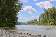 Natura di Altai: montagne e fiume Immagine Stock Libera da Diritti