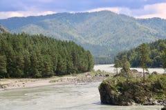 Natura di Altai: montagne e fiume Fotografia Stock