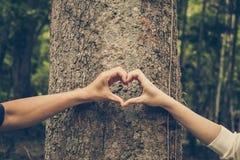 Natura di amore fotografia stock libera da diritti
