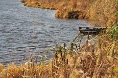 Natura di autunno Fotografia Stock Libera da Diritti
