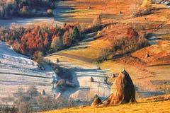 Natura di Carpathians Immagine Stock