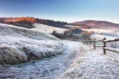Natura di Carpathians Immagini Stock Libere da Diritti