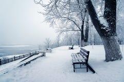 Natura di inverno Fotografia Stock
