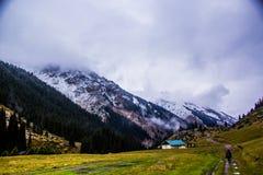 Natura di Kirgiz di zona del lago Kol dell'ala Fotografia Stock