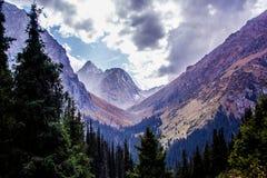 Natura di Kirgiz di zona di Kol dell'ala Immagine Stock
