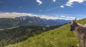 Natura di Lesachtal Gailtal del paesaggio di estate delle montagne dell'Austria Fotografia Stock Libera da Diritti