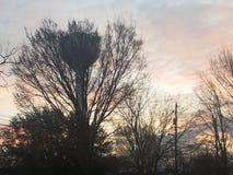 Natura di tramonto Immagine Stock Libera da Diritti