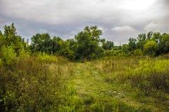 Natura di verde di estate del sentiero forestale vecchia lontano Fotografia Stock