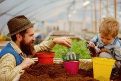 Natura e cura natura di cura del figlio e del padre Natura e concetto di cura cura della famiglia circa la natura in serra tutto immagine stock