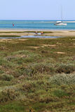 Natura e paesaggi del Portogallo Viaggio di Europa wanderlust fotografia stock libera da diritti
