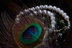 Natura e tesori Fotografia Stock