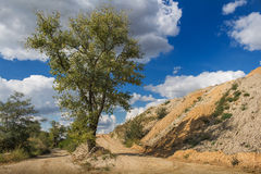 Natura e un cielo nuvoloso Fotografia Stock Libera da Diritti