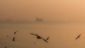 Natura ed industria, fine ma distante Fotografia Stock