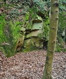 Natura in Europa media fotografie stock