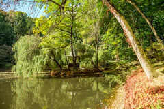 Natura Europe Ukraine zdjęcia royalty free
