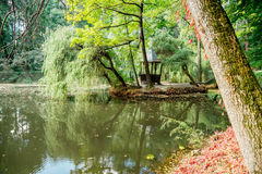 Natura Europe Ukraine zdjęcia stock