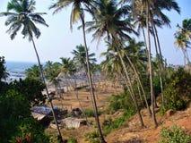 Natura Goa w India zdjęcie stock