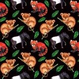 Natura hyperrealistic del modello senza cuciture dell'acquerello dei tropici dell'Asia - tapiro, più tarsier, panda minore e fogl fotografia stock