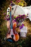Natura i muzyka zdjęcie royalty free