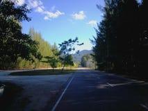 Natura i sceneria zdjęcia royalty free