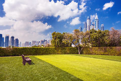 Natura intorno al porticciolo di lusso del Dubai, Dubai, Emirati Arabi Uniti Fotografia Stock Libera da Diritti