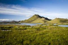 Natura islandese Fotografia Stock Libera da Diritti