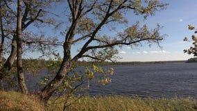 Natura Jeziorny Tiosto zbiory