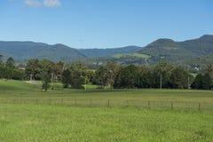 Natura kangur dolina Fotografia Royalty Free