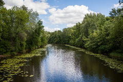 Natura Kijów Obrazy Stock