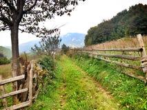 natura krajobraz na górze Zdjęcie Royalty Free