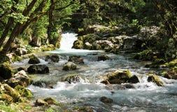 Natura krajobraz, Sunik wodny hurst, Slovenia Obraz Stock