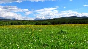 Natura krajobraz Waterton jeziora i lodowów parki narodowi zdjęcie royalty free