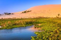 Natura krajobraz z piasek diuną i jezioro w świetle słonecznym fotografia royalty free