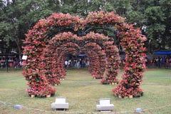 Natura kwiatów powitania scena zdjęcie stock