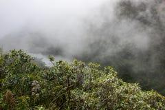 Natura, lago e la nebbia nelle montagne Immagine Stock Libera da Diritti