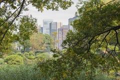 Natura lub miastowy tło z widokiem park w Tokio zdjęcie royalty free