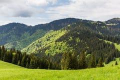 Natura lungo la strada di riciclaggio da Malino Brdo a Revuce in Slova Immagini Stock