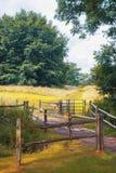Natura media di estate, Inghilterra Immagini Stock