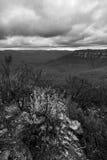 Natura in montagne blu Australia Fotografia Stock Libera da Diritti