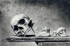 Natura morta astratta del cranio con la priorità alta del graffio nel nero ed in w fotografia stock