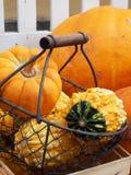 Natura morta autunnale con le zucche arancio Immagine Stock