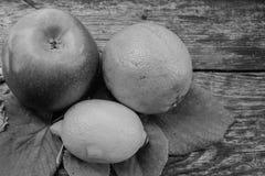 Natura morta in bianco e nero con il limone, la mela e l'arancia Immagine Stock Libera da Diritti
