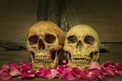 Natura morta che dipinge con il cranio dell'essere umano delle coppie Fotografia Stock Libera da Diritti